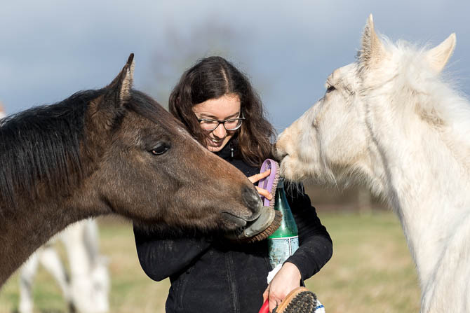 Gabi Neurohr Foal Education - Mathilde gets crowded by two foals