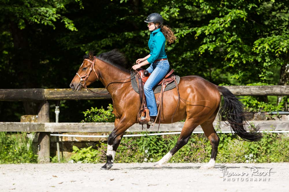 Gabi Neurohr Horse Training - Canter with Quarter Horse mare